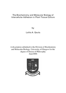 The Biochemistry And Molecular Biology Of Intercellular Adhesion In