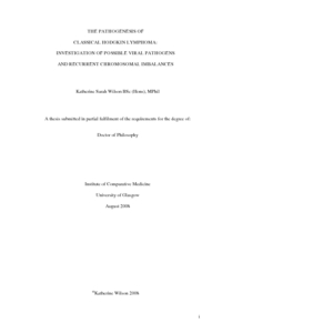 Master thesis 2008